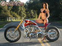 bike-bike-3529
